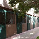 Horse Boarding Stables